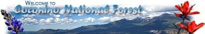 NPS/USFS Interpretive Partnership