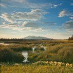 Navigating Flagstaff's Water Future