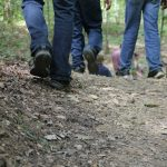A Guided Walk through the Here and Now