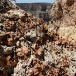 Gallery Talk: Searching for Grand Canyon Uranium