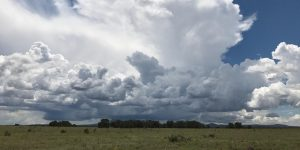 Future of the Colorado Plateau Forum