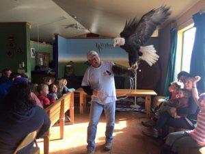 Family Science: Eagle Celebration