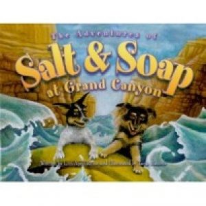 Tiny Tales - The Adventures of Salt and Soap at Grand Canyon