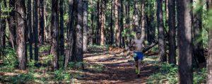 Flagstaff Extreme Big Pine Trail Runs