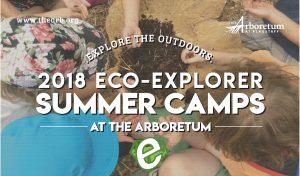 Eco-Explorer Summer Camps