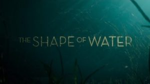 Downtown Brew and View: The Shape of Water