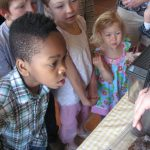Family Science: Amazing Arthropods