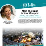 Meet the Bugs in your Compost