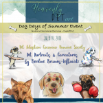 Dog Days of Summer Adoption and Caricatures