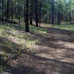 PUTLRUS National Hike Day Clean-Up
