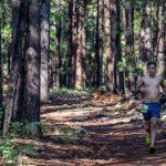 Big Pine Trail Runs