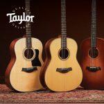 Taylor Guitars Showcase Event