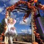 Arboretum Pumpkin Walk