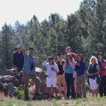 Kachina Wetlands Migratory Bird Day