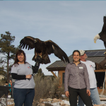 Willow Bend Environmental Education Center Annual Celebration