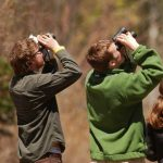 Adult Workshop: Birding 101