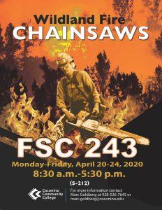 Wildfire Chainsaw Class