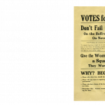 N@M The Great Demand: An Arizona Suffrage Primer