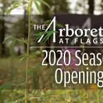 The Arboretum at Flagstaff Opening Day