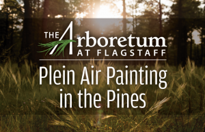 Plein Painting in the Pines Art Class
