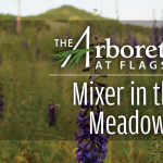 **CANCELED** Mixer in the Meadow at The Arboretum