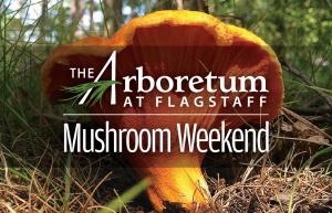 *CANCELED* Mushroom Weekend at The Arboretum at Fl...