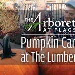 **CANCELED** Pumpkin Carving at Lumberyard Brewery
