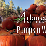 **CANCELED** Annual Pumpkin Walk at The Arboretum at Flagstaff