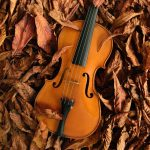 Autum Winds Virtual Concerts
