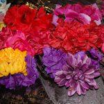 Plant Talk: A garden ofrenda