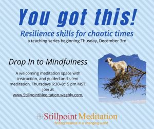 You Got This! Resilience Skills for Chaotic Times