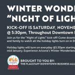 """Winter Wonderland """"Night of Lights"""""""