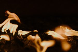 Science Saturday: Fire Ecology