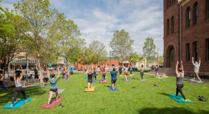"""Yoga on the Lawn """"Physical Distancing Style"""""""