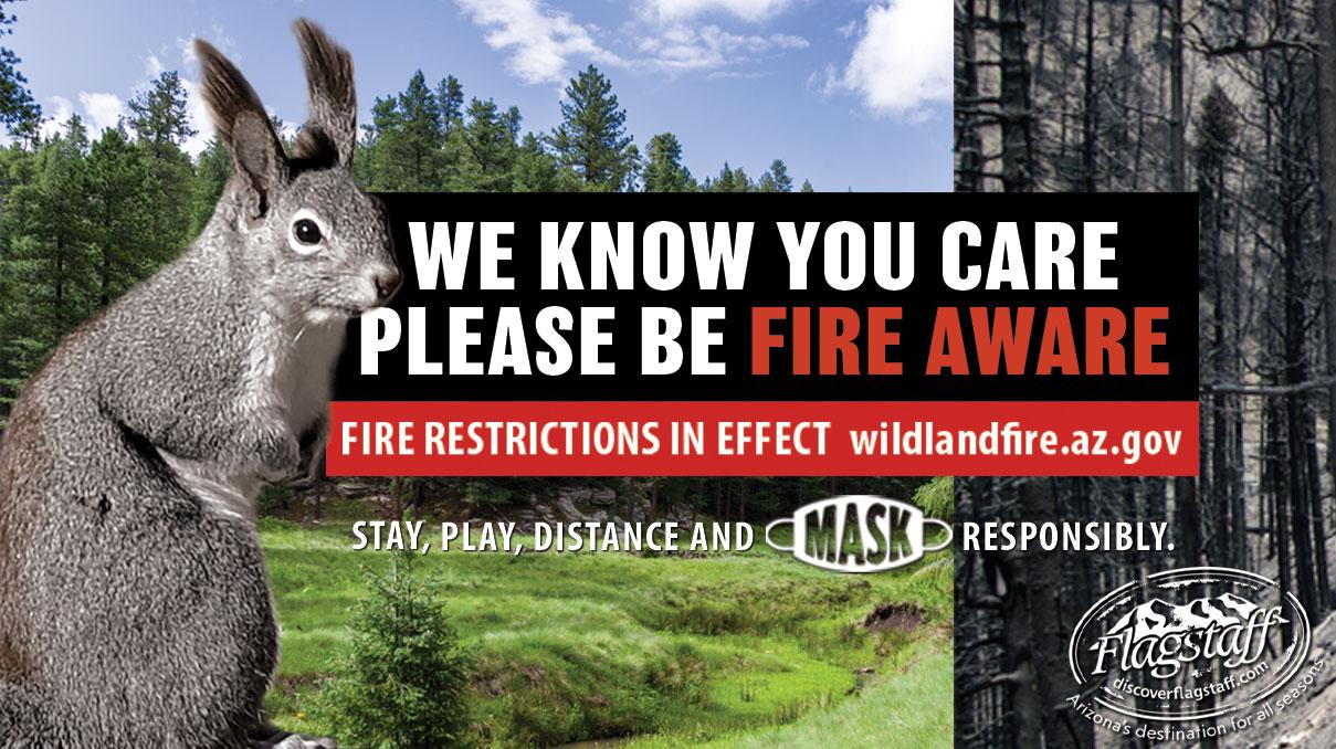 Ad for Wildlandfire.az.gov about fire awareness