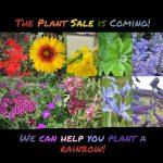 The Arboretum Plant Sale