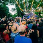 12th Annual Flagstaff hullabaloo Festival