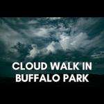 Cloud Walk in Buffalo Park