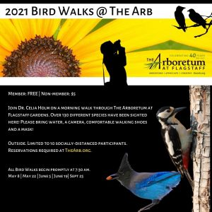 Bird Walks @ The Arb