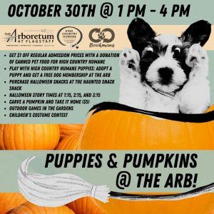 Puppies and Pumpkins @ The Arb