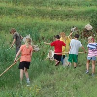NAU Summer Bug Camp