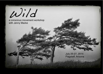 Wild: A Conscious Movement 5 Rhythms Workshop