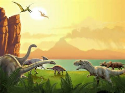 Discovery Summer Camps – Dino-Mite Friends