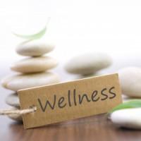 Wellness Class Series