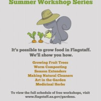 Seed Saving Workshop
