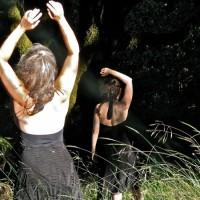 Feldenkrais Awareness Through Movement Lessons