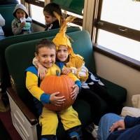 The Pumpkin Patch Train
