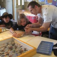 Willow Bend: Amazing Arthropods!