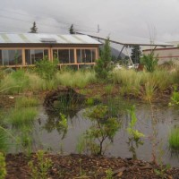 Free Water Harvesting Workshop